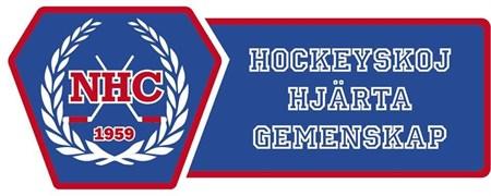 Hockeyskoj
