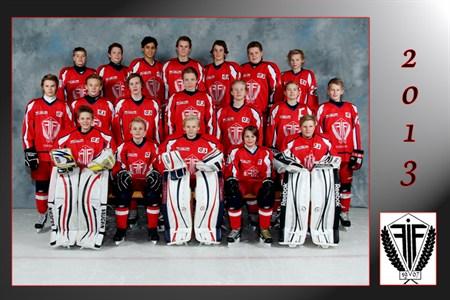forshaga hockey